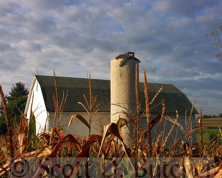 East York Farmscape