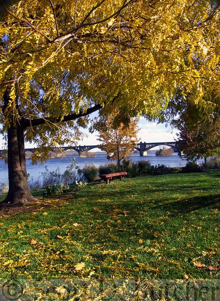Columbia-Wrightsville Bridge, Autumn