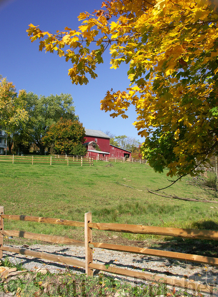 Druck Valley in Autumn