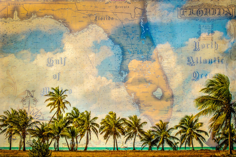 Historic Map and Palms- Florida