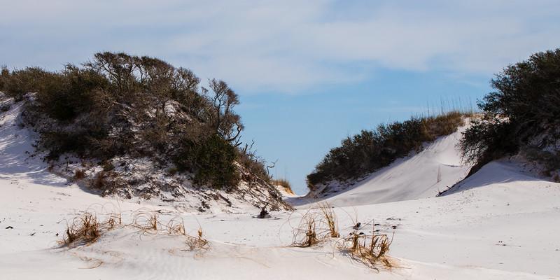 Sand Dune (Pano) - Destin, FL
