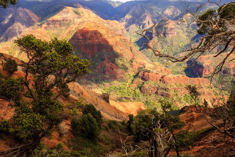 Waimea Canyon #1 - Kauai