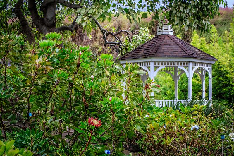 Kula Botanical Garden - Upcountry Maui