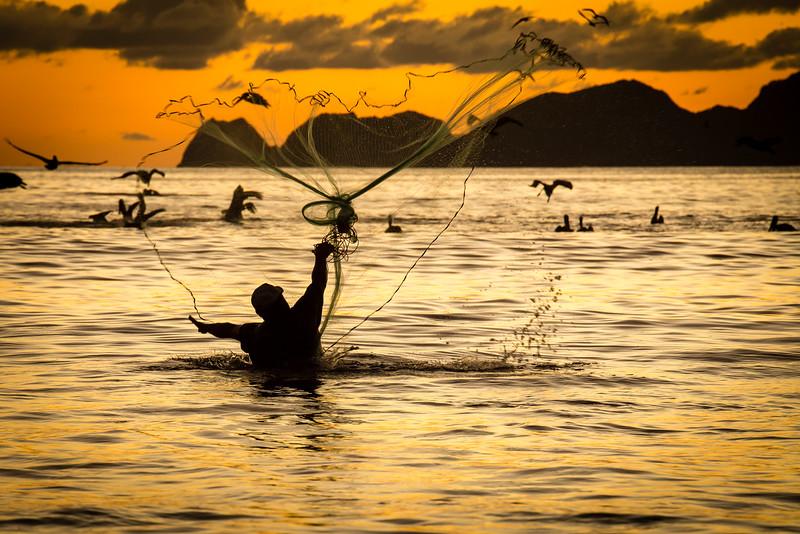 Casting Net - Santiago Bay,  Mexico