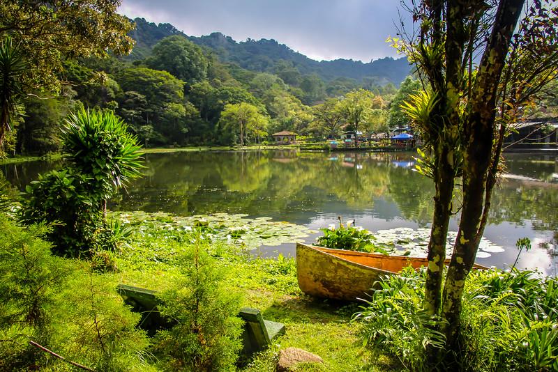Selva Negra (Black Forest) - Nicaragua