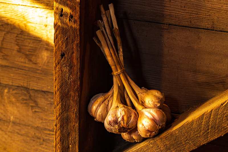 Garlic - Maplewood, MN