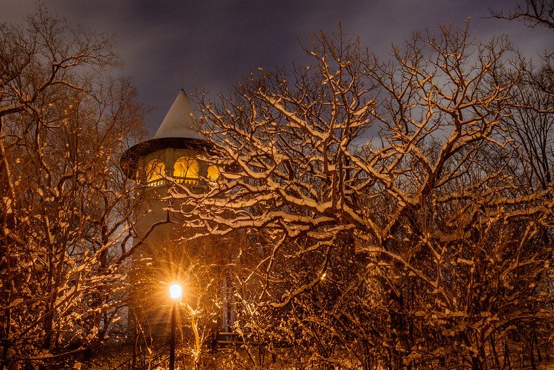Witch's Hat Water Tower in Prospect Park -  Minneapolis, MN