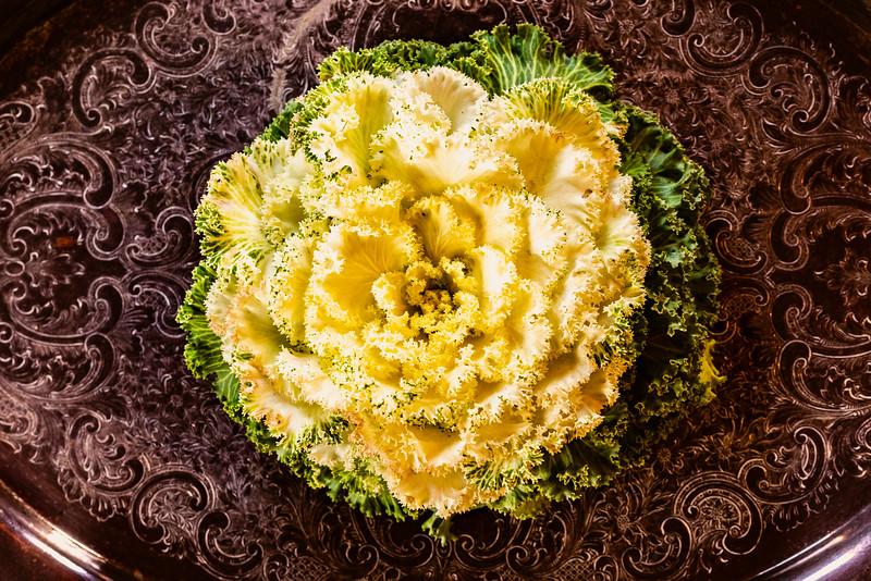 White Kale - Maplewood, MN
