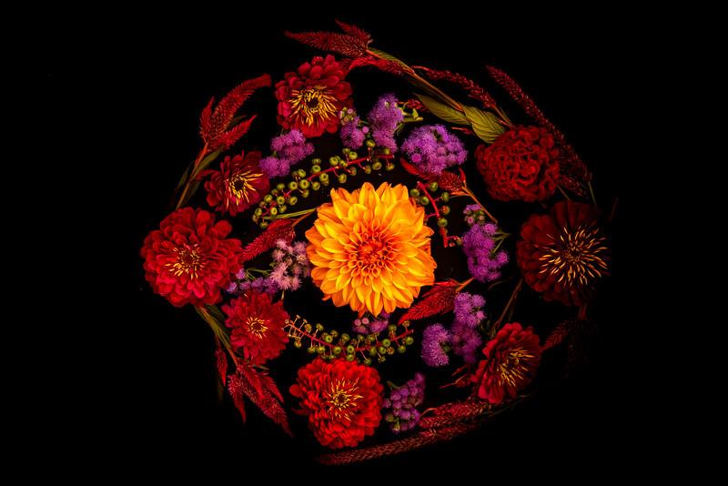 Summer Blooms - Maplewood, MN