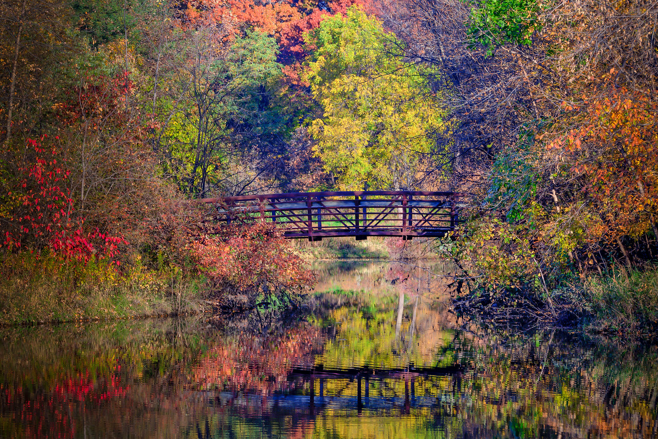 Fall Bridge - Roseville, MN