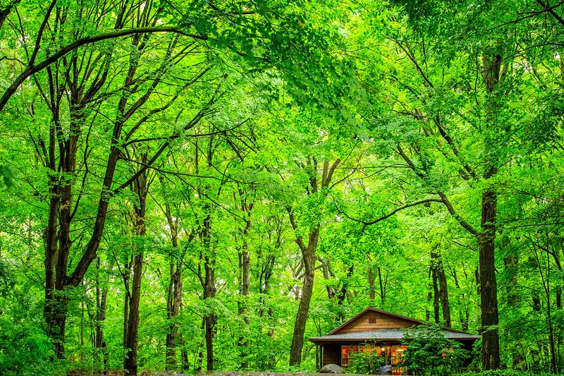 Berens Cabin - MN Landscape Arboretum