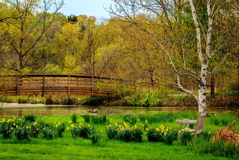 Walking Bridge - Minnesota Landscape Arboretum