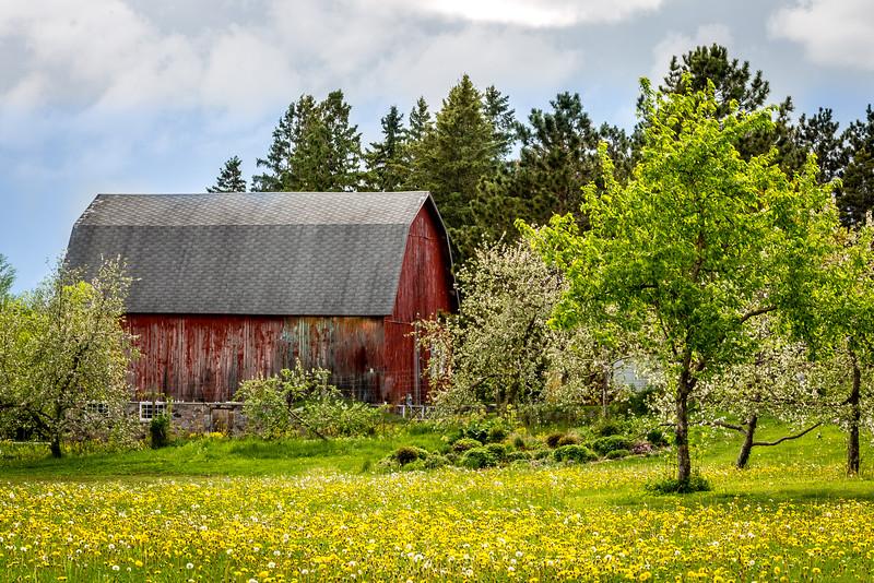 Barn - Baker Apple Orchard, Centuria, WI