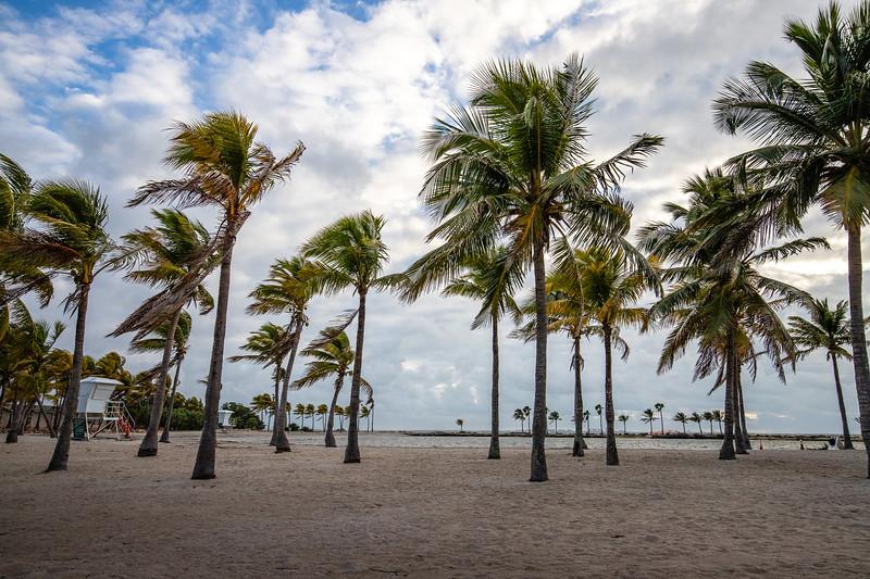 Matheson Hammock Park - Miami