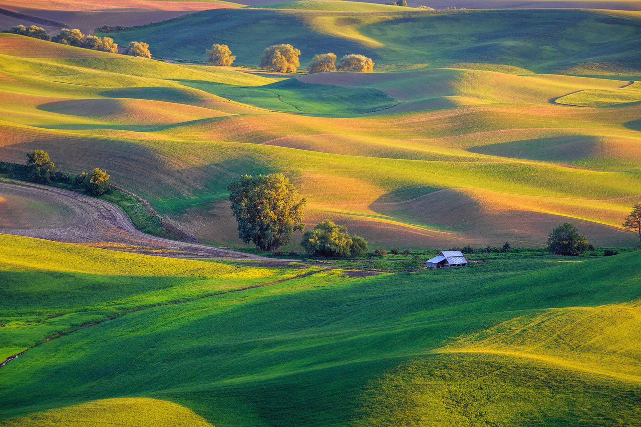 Palouse Barn - Eastern Washington
