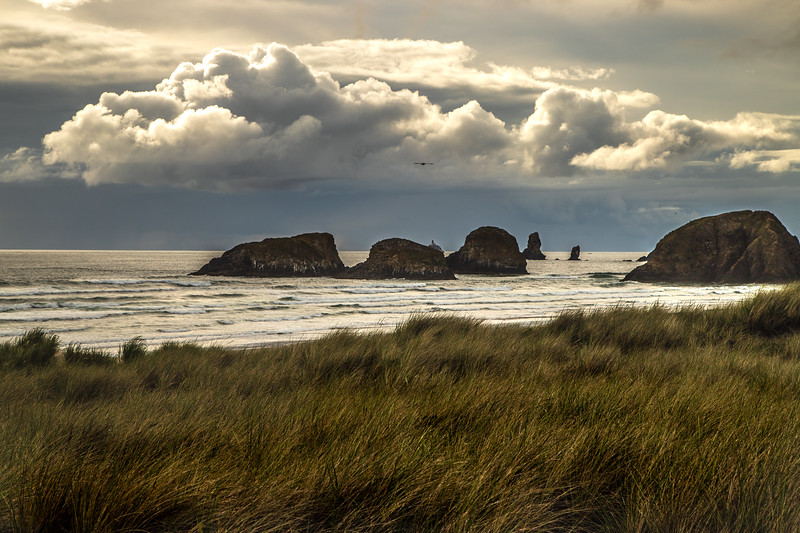 Sea Stacks #1 – Canon Beach, WA