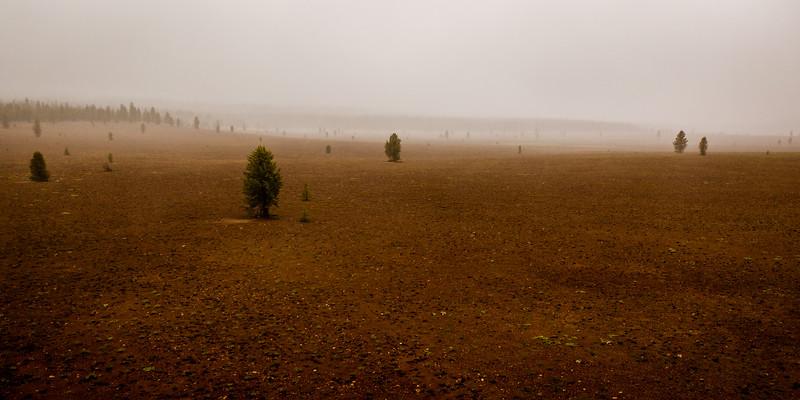 Pumice Desert (Pano) – Crater Lake National Park