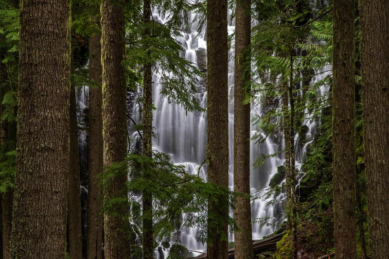 Ramona Falls #1 – Mt. Hood National Forest, OR