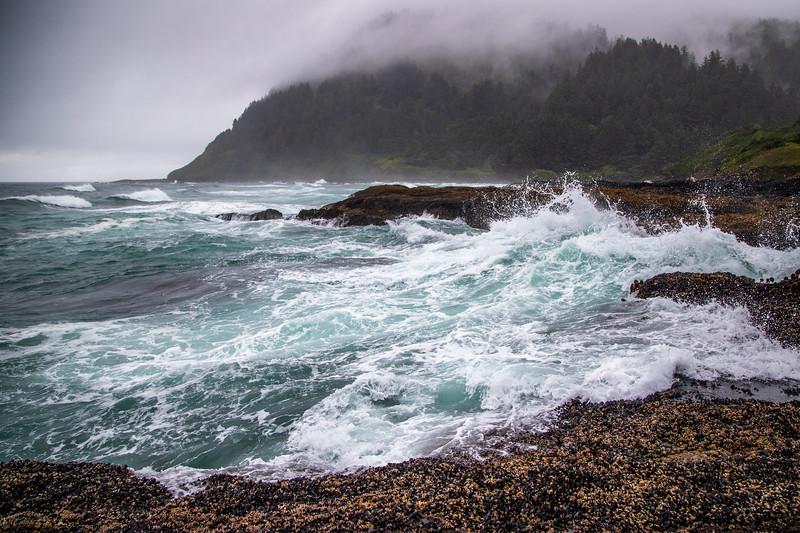 Cape Perpetua Surf  – Cape Perpetua Special Interest