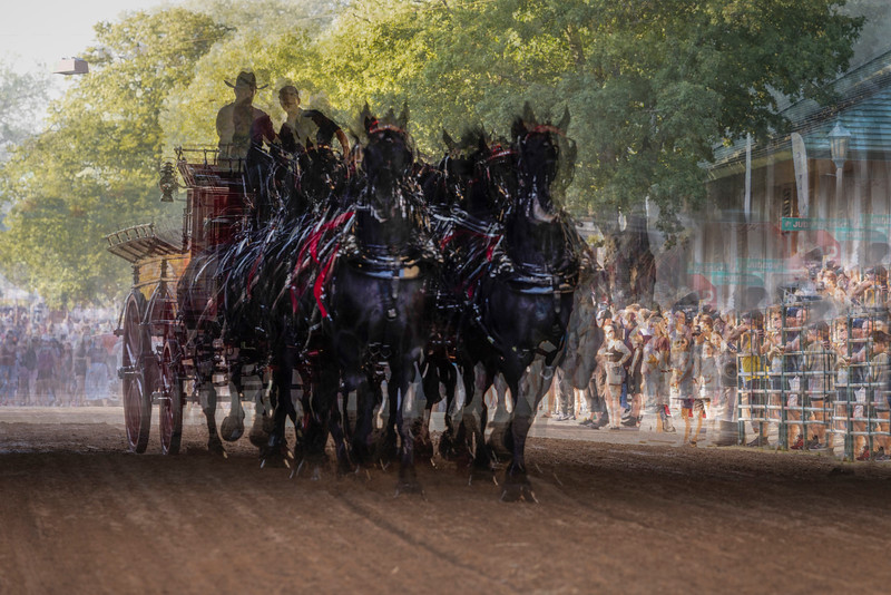 Draft Horse Six-Horse Hitch - Minnesota State Fair, St. Paul, MN