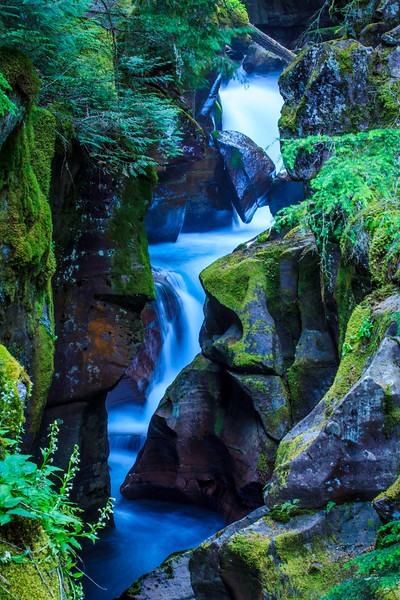 Avalanche Creek Gorge  - Glacier National Park