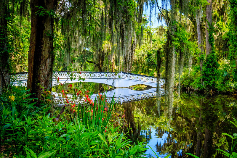 Long White Bridge #1 - Magnolia Plantation and Gardens, Charleston, SC