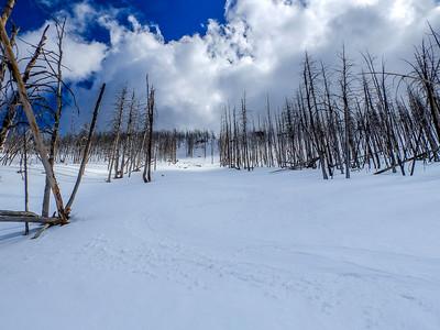 Fillmore Winter