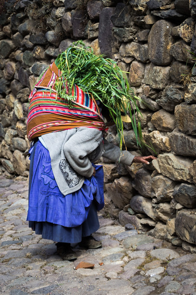 Elder Lady Carrying Fodder through the Streets of Ollantaytambo
