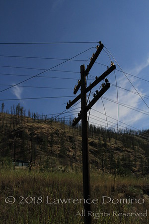 Abandoned telegraph lines