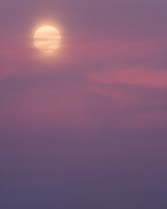 The Moon at San Luis NWR