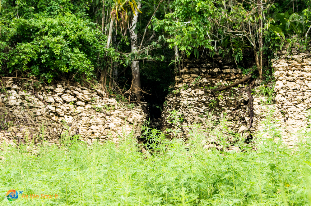wall being reclaimed by the jungle near el Camino Real de Panama