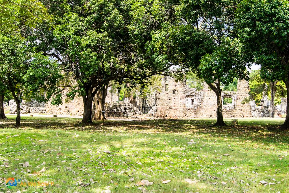 Grounds of Panama Viejo
