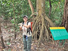 Our Naturalist, Jenny, describes the rain forest ecology for us.