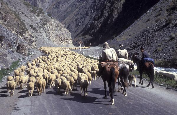 Kyrgyzstan - קירגיסטאן