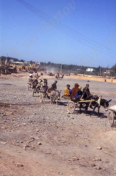 Donkey trap carrying people to famous Sunday Market in Kashgar in Xinjiang Province China