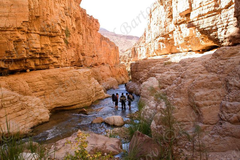 IMG_1158 Zered wadi- Jordan.jpg