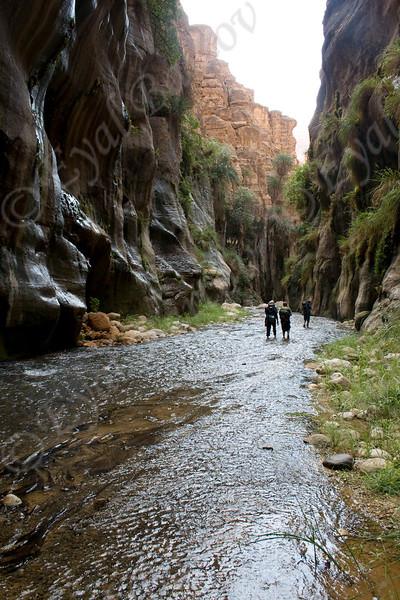IMG_4839 Zered wadi- Jordan.jpg