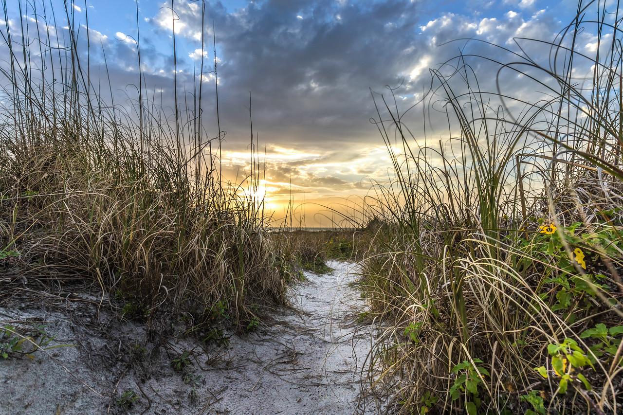Trail through beach dune at Fort De Soto