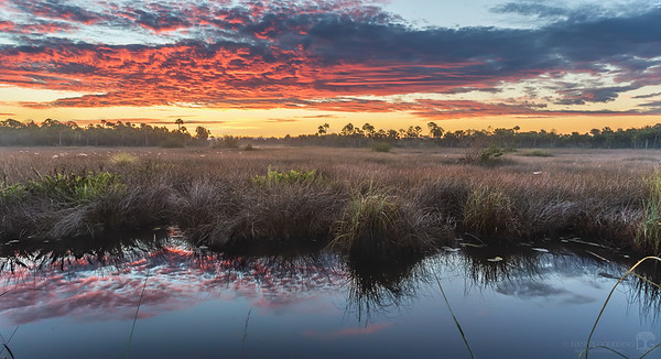 Sunrise at Merritt Island National Wildlife Refuge