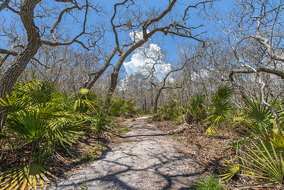 Nature trail at Washington Oaks Gardens State Park