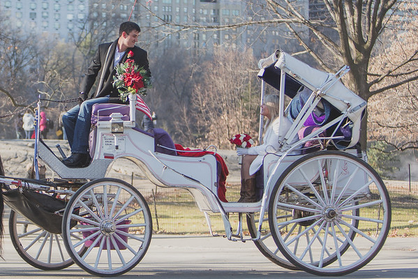 Just Married - Horse Carriage Style - Central park