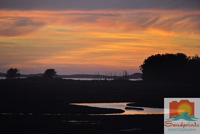 Estuary Sunset_sandprints 011 w