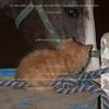 2011-06-12_004-Claire
