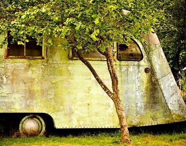 Judith Bain presents Gone Camping(Honourable mension)