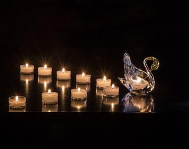 Gabriella Hamley presents Spirit Swan