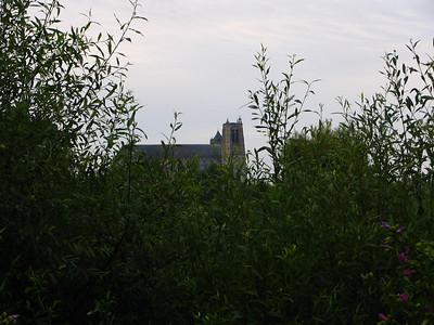 Bourges Les Marais 016 C-Mouton