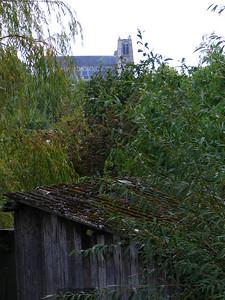 Bourges Les Marais 014 C-Mouton