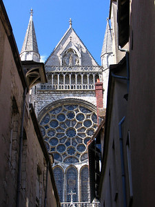 Chartres 9 C-Mouton