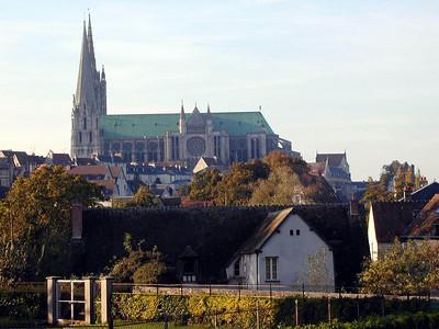 Chartres 73 C-Mouton
