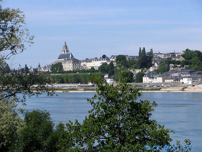 Blois 013 C-Mouton